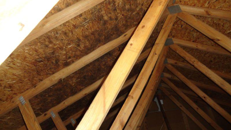 Moldy roof sheathing