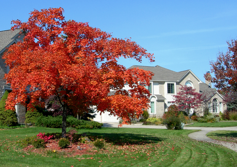 Maryland Homeowner S Autumn Checklist On Top Home